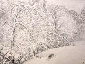"""""""Хрустальная зима"""", бумага, карандаш, 45х60, 2011."""