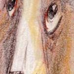 """""""Собака. Беста."""", масляная пастель 10 х 23, 2000 год."""