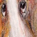 """""""Собака. Беста.1"""", масляная пастель 10 х 23, 2000 год."""