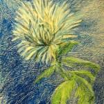 """""""Белый цветок"""", масляная пастель, 10 х 17, 2003 год."""